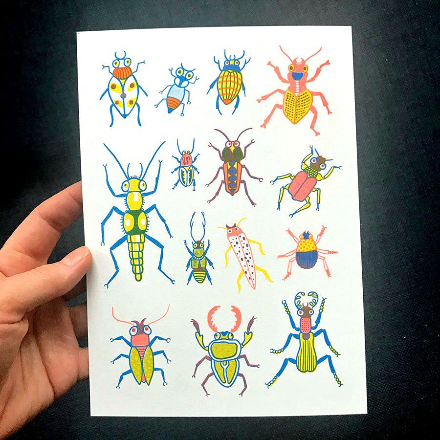 Bugs Katja Spitzer